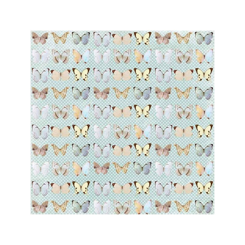 Butterflies - Butterfly