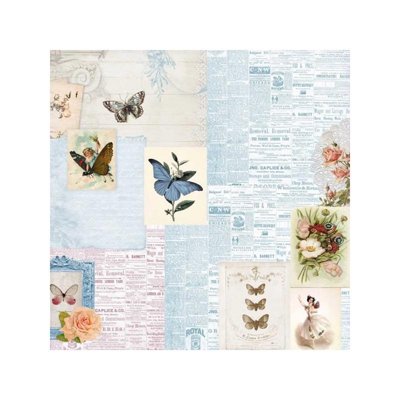 Butterflies - Beauty