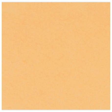 Lámina de Fieltro sintético 2mm Pastel Naranja