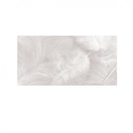 Plumas - Gallo blanco 7,5 a 10cm