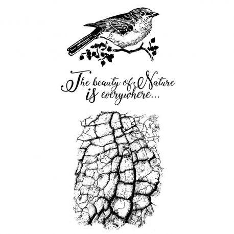 Stamperia - Set de sellos de caucho Cosmos Bird (WTKCCR02)