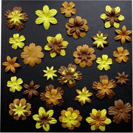 Surtido 45 Flores - Vanille Chocolat