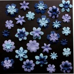 Surtido 45 Flores - Bleuets