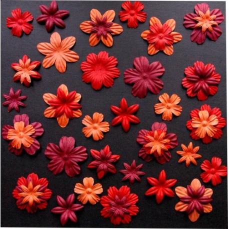 Surtido 45 Flores - Eté Indien