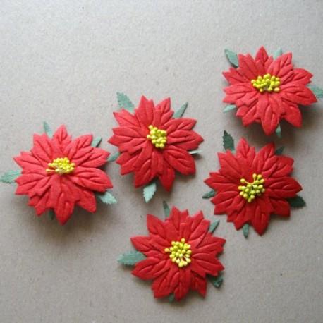 5 poinsetias Rojos