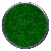 Polvo relieve Primary Evergreen