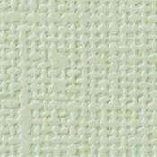 CARTULINA textura Lienzo - ALOE VERA