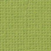 CARTULINA textura Lienzo - AGUACATE
