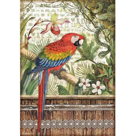 Papel Arroz A4 Parrot