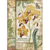Papel Arroz A4 Orchid