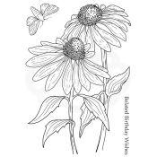 Set de Sellos Acrílicos Echinacea and Moth