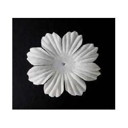 25 flores blancas - Oeuillet
