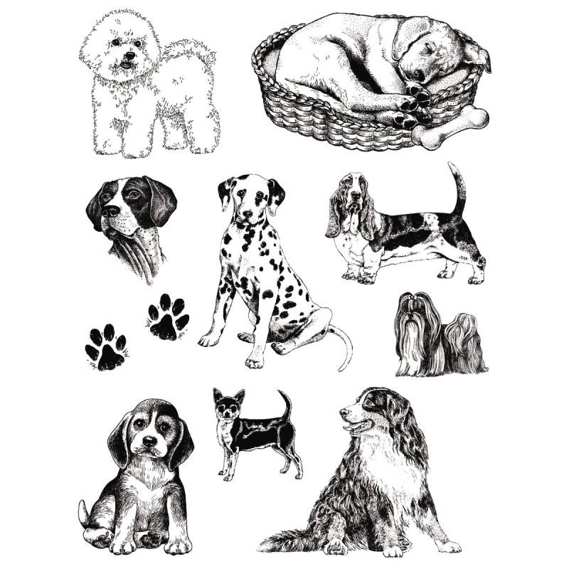 Set sellos acrilicos Perros